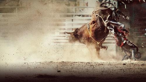 Foto de touro pulando e peão caindo poeira subindo