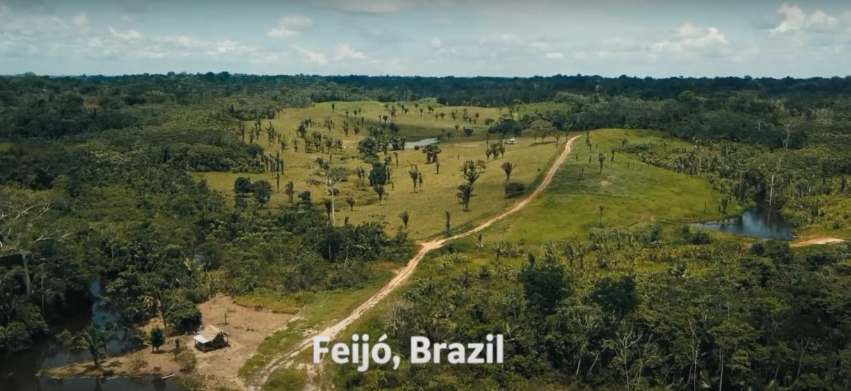 """JOURNEY INTO BRAZIL"" IS NOMINATED FOR VIDEO OF THE YEAR AT THE TONGIES AWARDS"